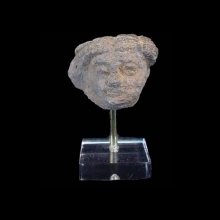 A Gandharan grey schist head of a male