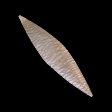 Bactrian chert spear head