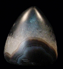 Agate conical bead seal with image of a horse