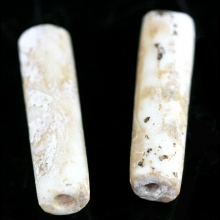A group of two Hongshan fossilised shell barrel shaped beads