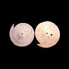 Two Neolithic fossilised shell burial ornaments (earrings)